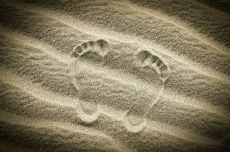 Footprints in sand 230