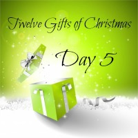 ChristmasGiftBox-200-Day_5